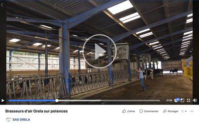 video-facebook-actualités